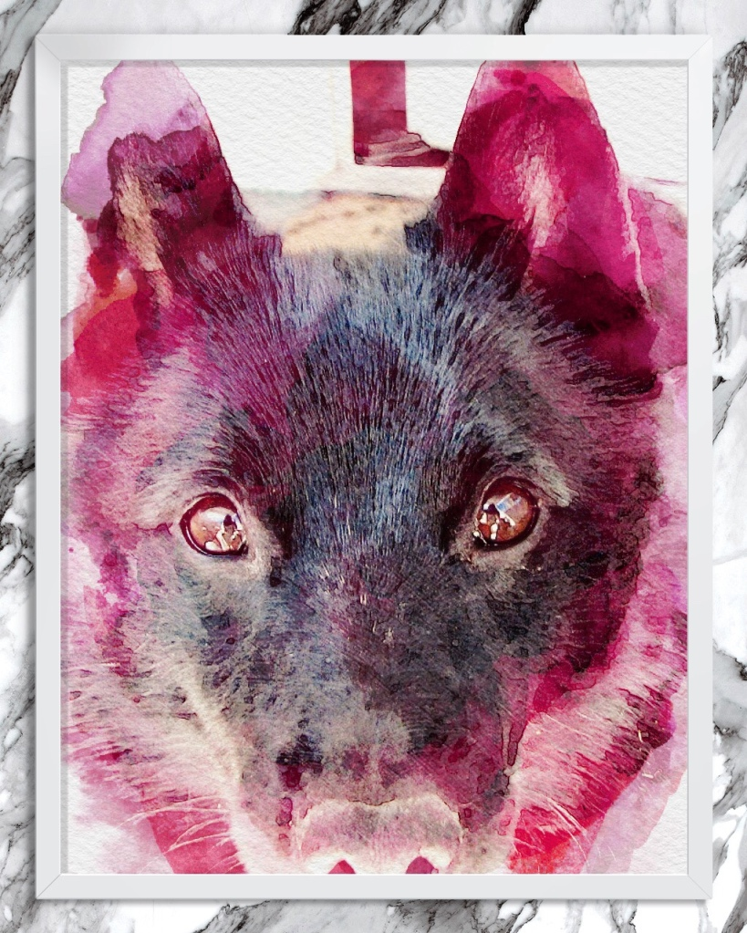 Head of wolf-like black dog, outlined with red-tinted watercolor effect