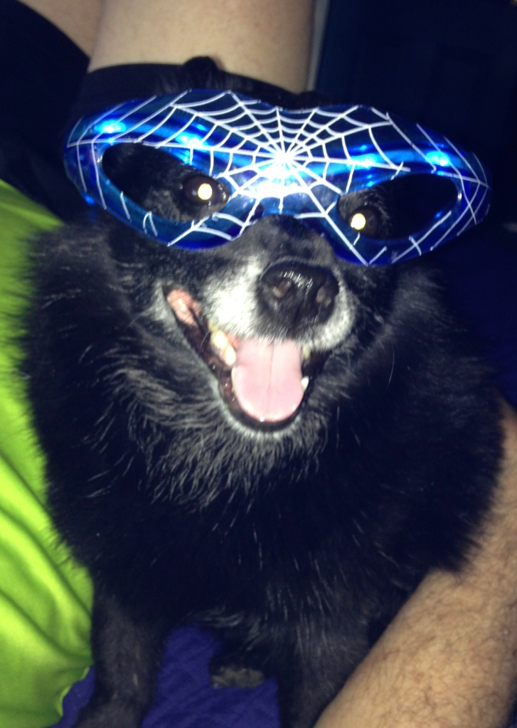 Face of black dog, wearing blue, illuminated glasses, and with big, open-mouthed smile.